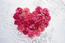 花♥濃いピンク